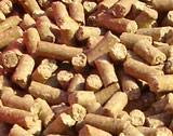 Balios Best Mineral 8 kg