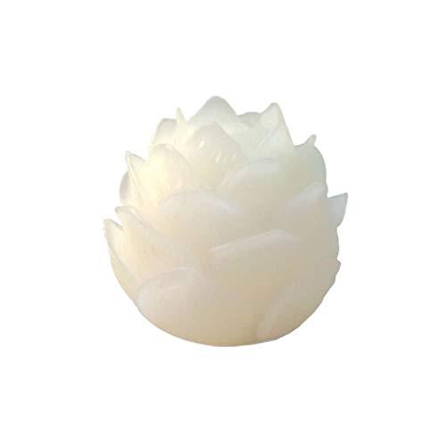 YSMLL Cuentas de raíz de Loto Bodhi talladas a Mano Blancas 5 Capas decoración de Semillas de Bodhi Accesorios de joyería Artesanal