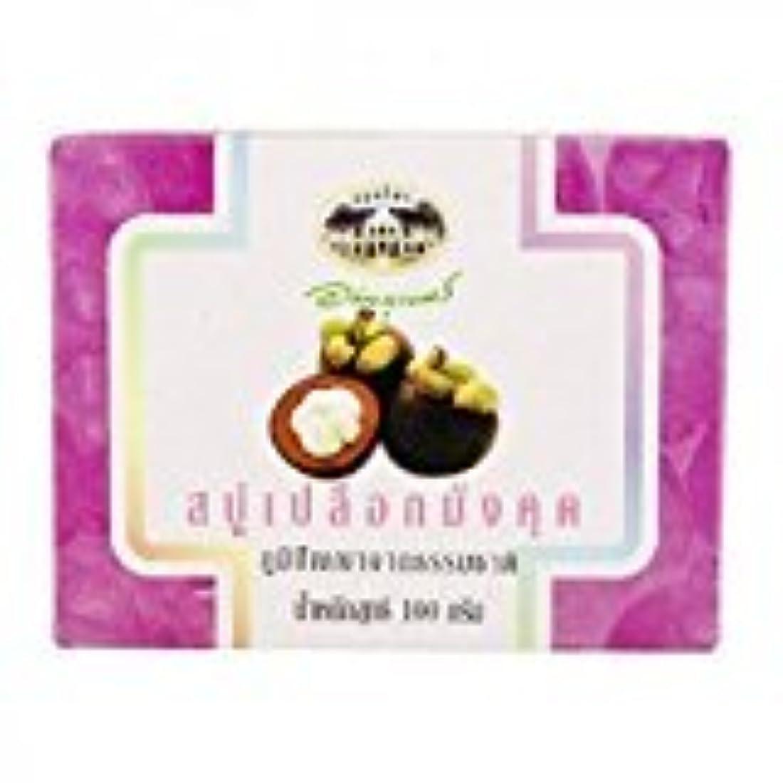 単調な最後に反動マンゴスチン石鹸 abhaibhubejhr Mangosteen Peel Soap 100g 1個