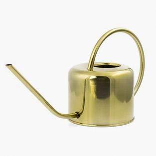 Kikkerland gieter Vintage Gold roestvrij staal 1,2 liter