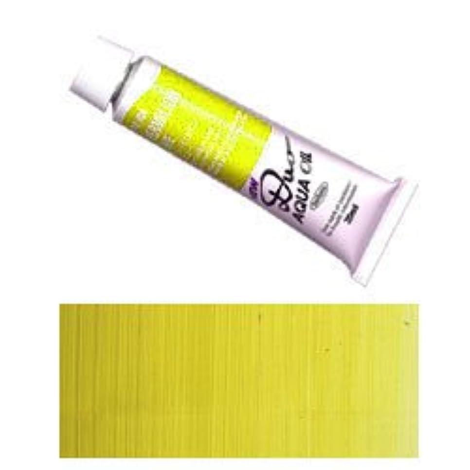 送ったステッチチャートDUO ホルベイン アクアオイルカラー デュオ 油絵の具 (水可溶性) 6号 (20ml) リーフグリーン