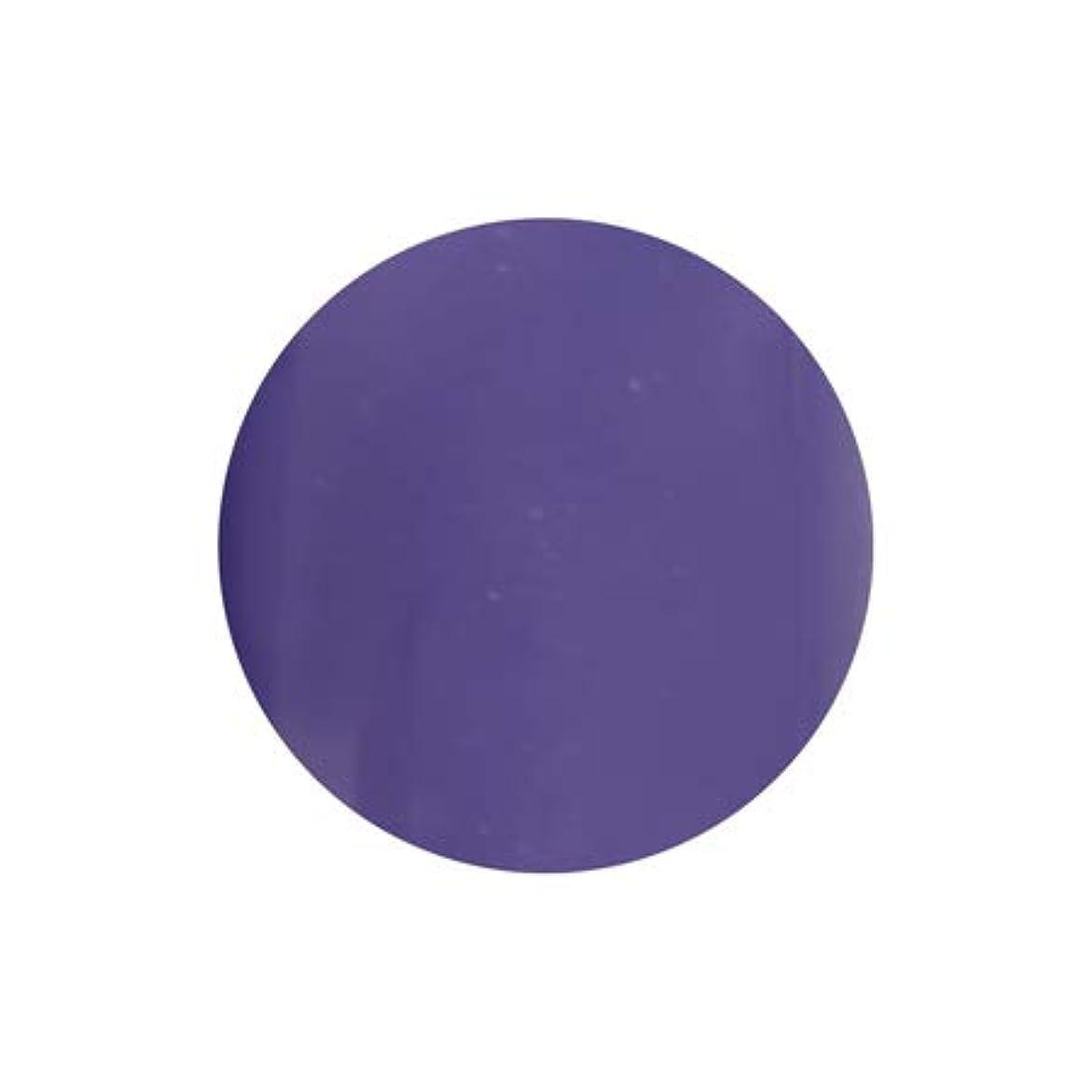 ラッカスセーブスリッパT-GEL COLLECTION カラージェル D228 シフォンバイオレット 4ml