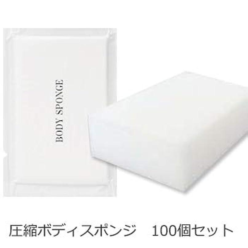表現偶然名前でボディスポンジ 海綿タイプ 厚み 30mm (1セット100個入)1個当たり14円税別
