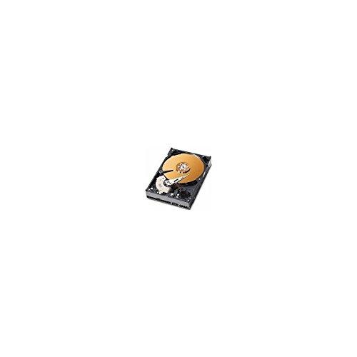 MicroStorage 160GB 3.5'' IDE 3.5' IDE/ATA - Disco Duro (3.5', 160...