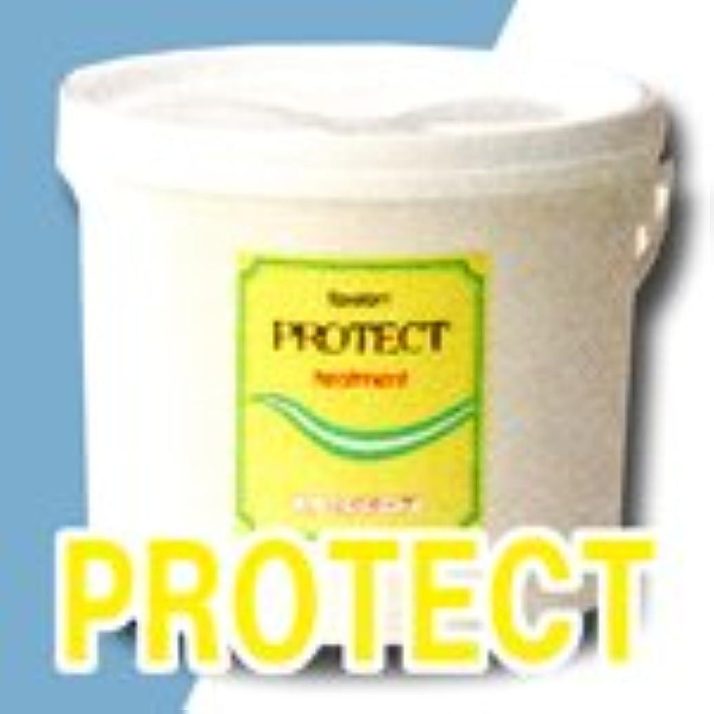 イノセンス実証する職人エポラール プロテクトヘアトリートメント (しっとりタイプ) 5kg 【大容量】【中央有機化学】