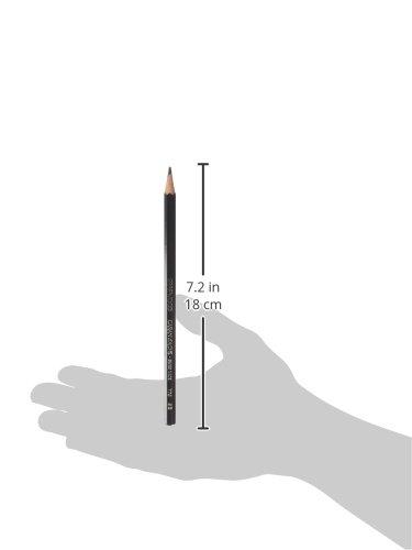 Caran D'ache Grafwood Graphite Pencil - 9B (775.259)