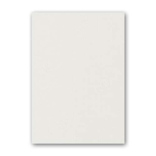 ARTOZ 25x Bastelpapier Bastelkarton - Ivory-Elfenbein - DIN A4 297 x 210 mm - Edle Egoutteur-Rippung - Hochwertiges 220 gm² Papier