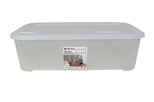 LifeStory SP Berner - Caja de Almacenaje con Tapa | Caja de Almacenaje Plástico Transparente - Capacidad 30 litros