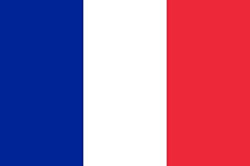 DISTRICOM France vlag, meerkleurig, één maat