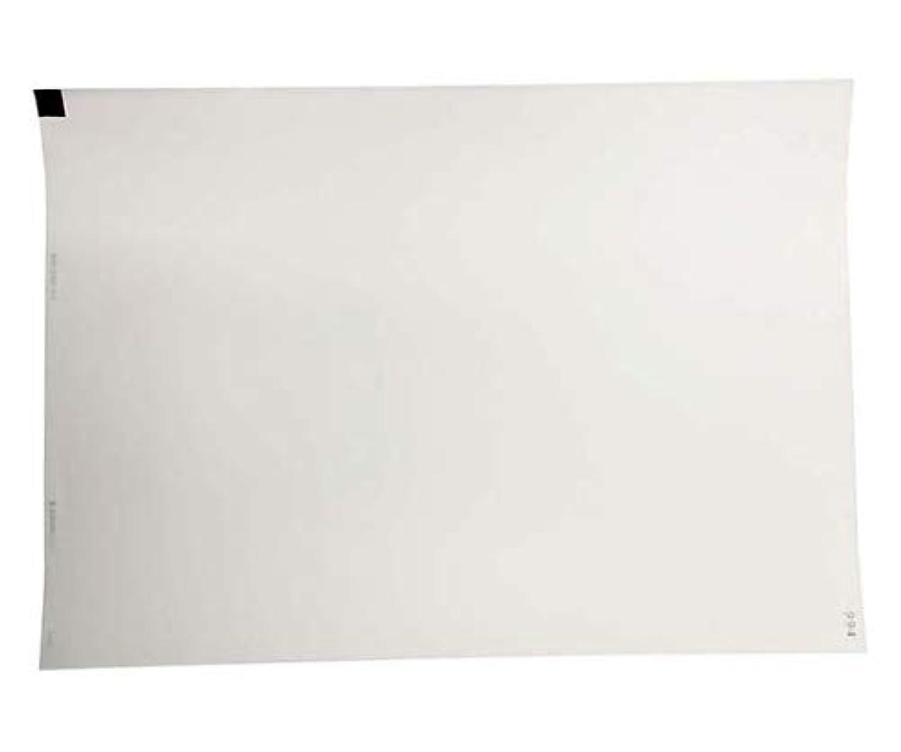 パンサー残基日曜日国際チャート 心電図記録紙 297mm巾×210mm折 全長210m MRC049-KC