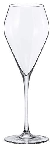 MODE RONA Champagner/Prosecco Kelch 24 cl, 6er Set