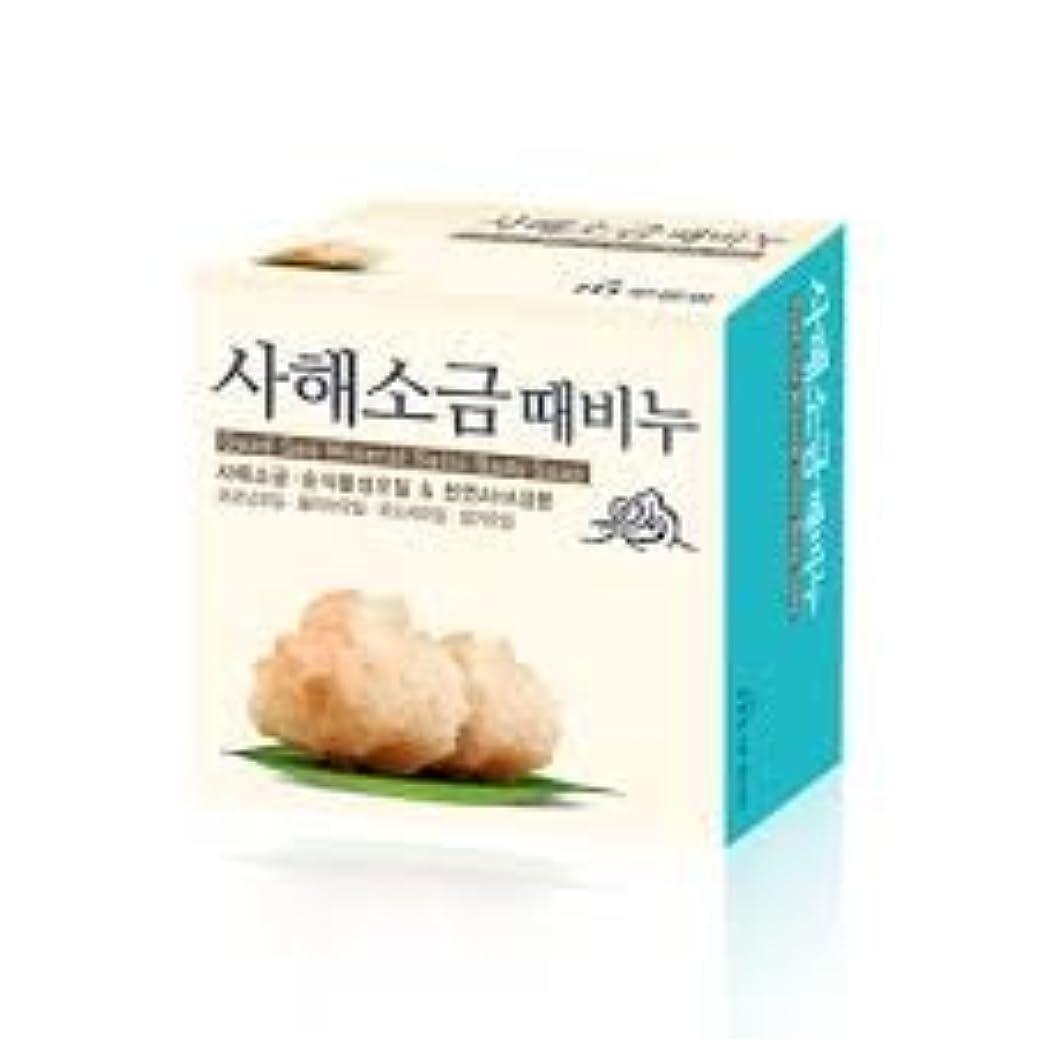 会社解く協定ムグンファ[MUKUNGHWA] 死海 塩 垢石鹸 100g/ Dead Sea Mineral Salts Body Soap