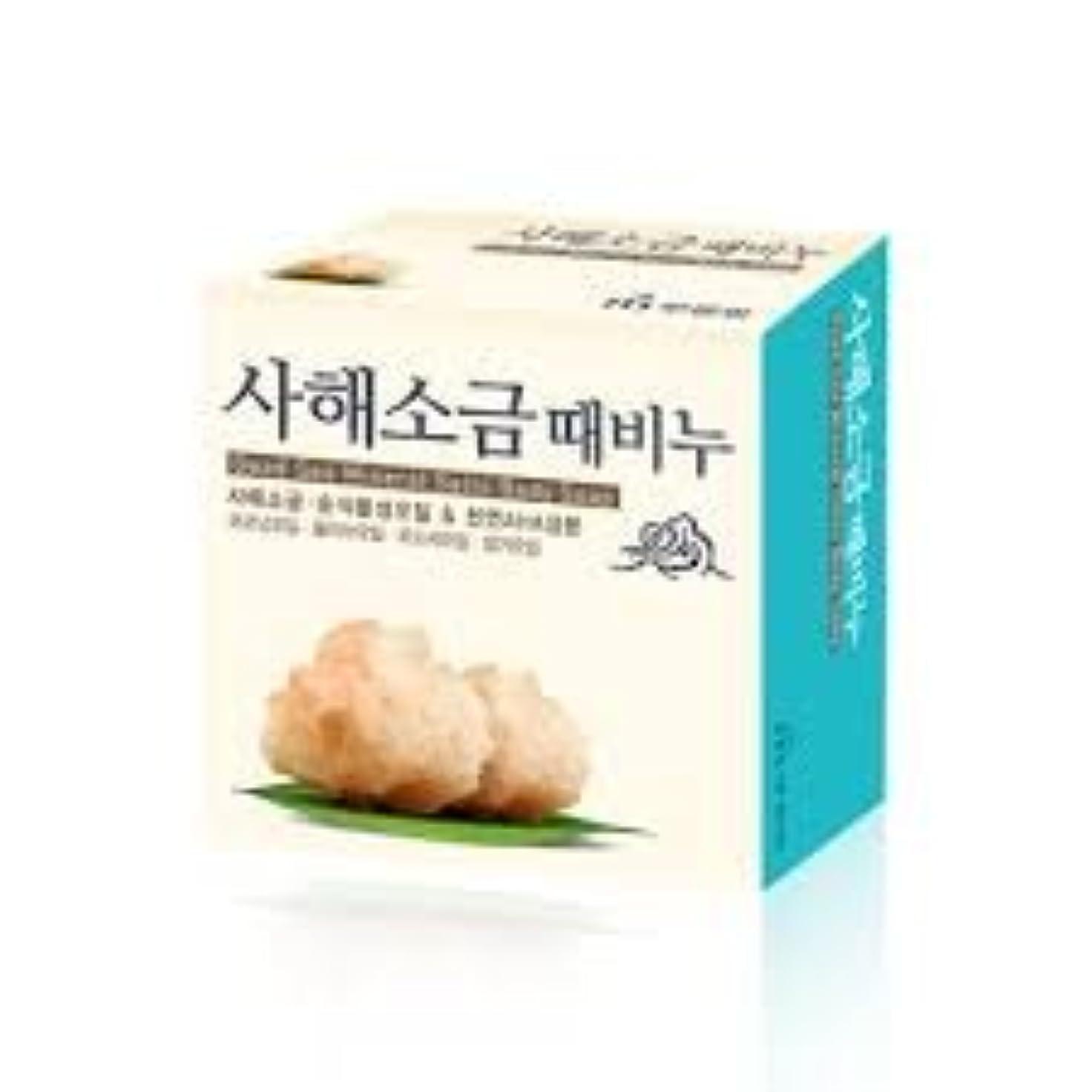 友だち炎上蒸気ムグンファ[MUKUNGHWA] 死海 塩 垢石鹸 100g/ Dead Sea Mineral Salts Body Soap