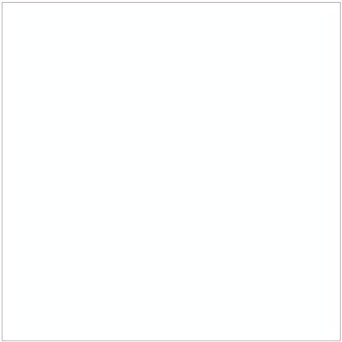 Ritrama Plotterfolie Vinyl glänzend, Breite wählbar, meterweise bestellbar, Farbauswahl, Breite:30.5 cm, Farbe:Weiß