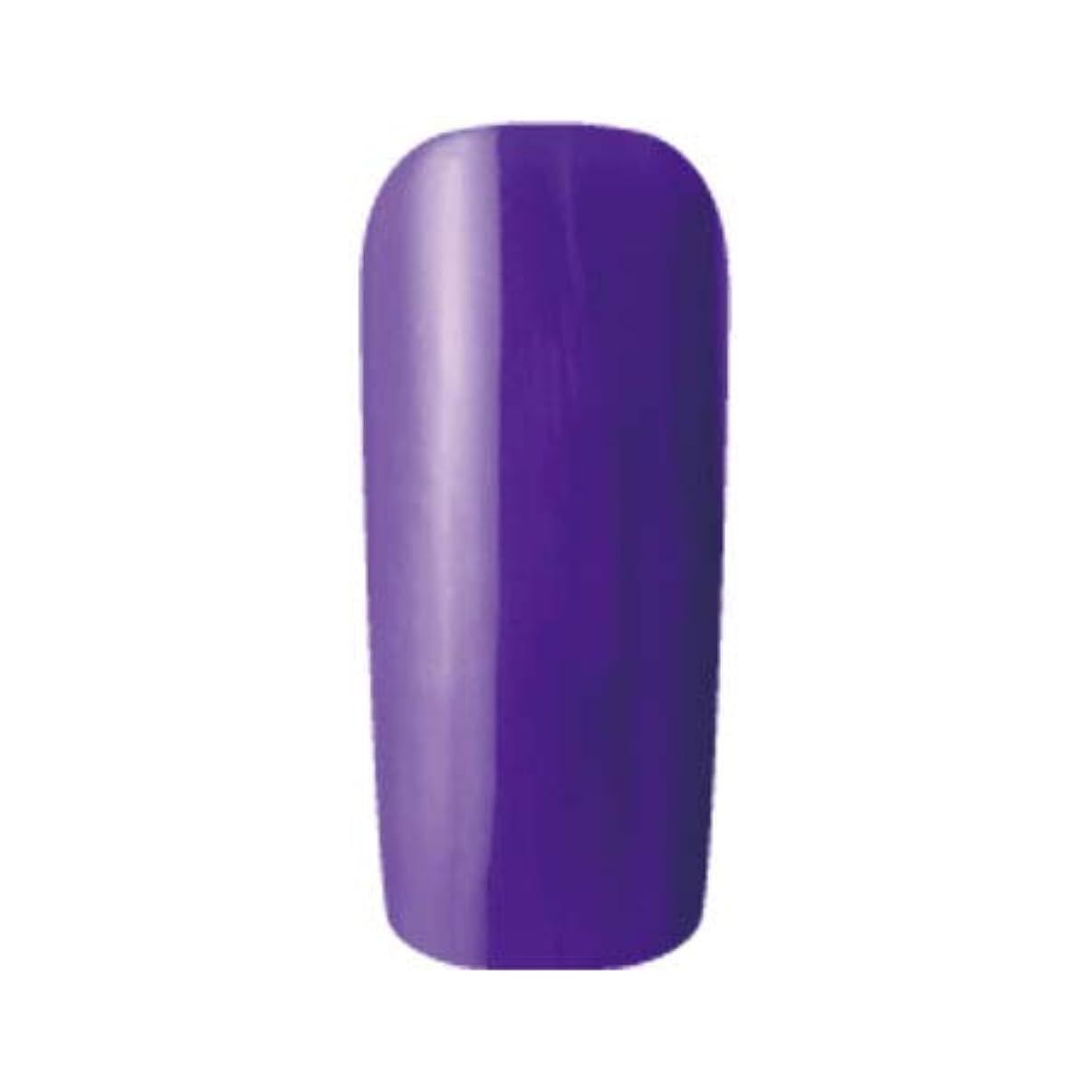 ましい緊張する非常に怒っていますFleurir Color Gel フルーリアカラージェル C15 シコン 4ml