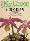 山野草12カ月―人気183種と管理のコツ (New My Green)の詳細を見る