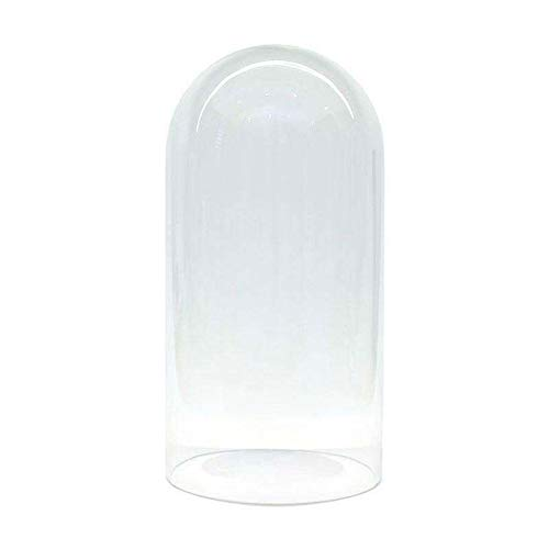 Fanal de cristal Ø15 altura 30cm