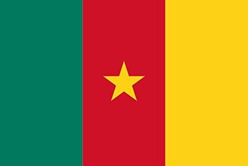Kamerun-Fahne zum Schwenken, Handfahne mit Stiel, 10,2 cm x 15,2 cm