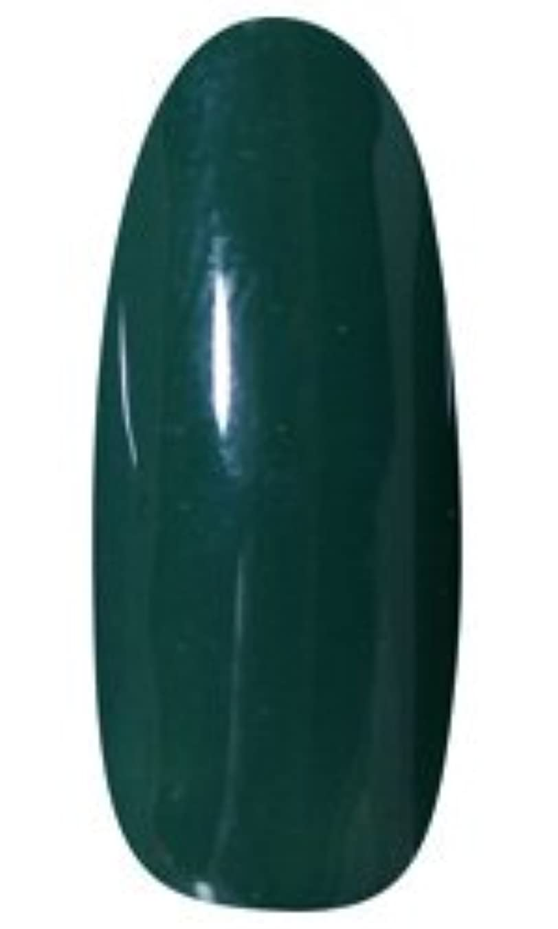 能力無知送る★LEAFGEL PREMIUM(リーフジェル プレミアム) カラージェル 4g 407 CHITOSEMIDORI(千歳緑)