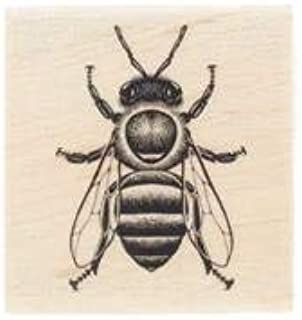 Honey Bee Rubber StampNew by: CC