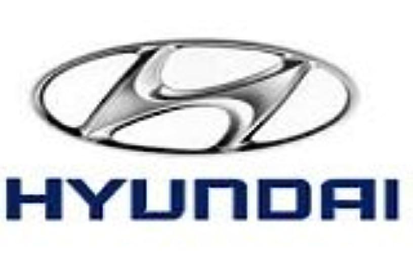 Genuine Hyundai 49563-38700 Axle Shaft Bearing, Front