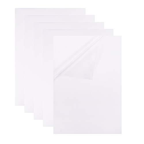 BENECREAT 10 PCS Hojas Adhesivas de Plantilla con Respaldo Adhesivo, A4 Papel PVC Transparente Apto para Impresora de Láser y Máquinas de Troquelado, Etiqueta de Comida y Deciración 29.7x21cm