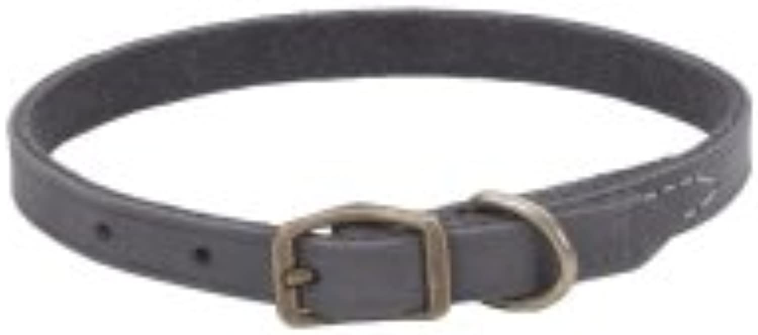 Coastal Pet Products CO31134 10 in. Leather Collar  Slate Grey