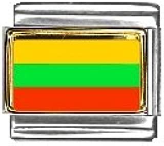 Clearly Charming Palestine Flag Italian Charm Bracelet Link