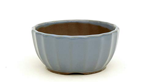 Bonsai Pavia | Macetas para Bonsais Japonesa Esmaltada 12,5 cm | con Forma de Flor de Loto | Esmaltada en Color Azul Celeste | Tamaño 12,5x7 cm