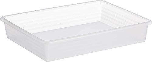 Rotho Linus Aufbewahrungsschale A4, Kunststoff (PP) BPA-frei, transparent, A4 (34,5 x 27,0 x 6,0 cm)