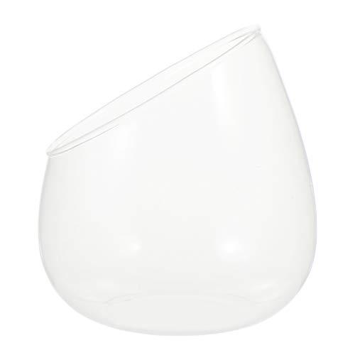 YARNOW Claro Bulle - Jarrón de cristal inclinado para decoración de plantas suculentas, maceta de...