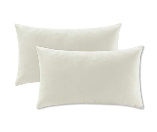 COMFORTLAND 2 Pack Decorative Throw Pillow Covers, Lumbar Soft Luxury Velvet Cushion Sham, 12x20 Solid Pillowcase Set for Sofa Couch Bed Chair Car Home Decor, Off White