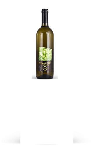 Cantine Mainetti - Ortrugo dei Colli Piacentini D.O.C. Frizzante - 6 Bottiglie