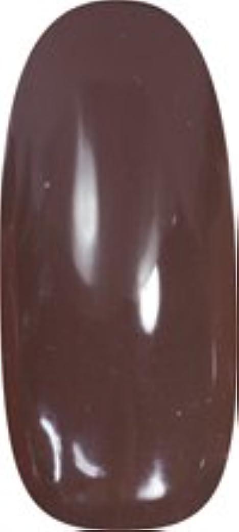 交流する病気の主婦★para gel(パラジェル) アートカラージェル 4g<BR>M004 チョコレート