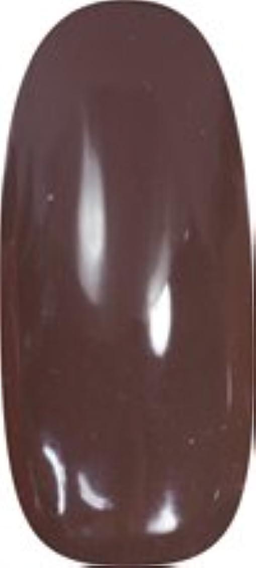 ハンディ生息地区画★para gel(パラジェル) アートカラージェル 4g<BR>M004 チョコレート