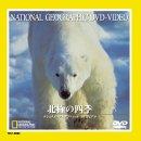 北極の四季 [DVD]