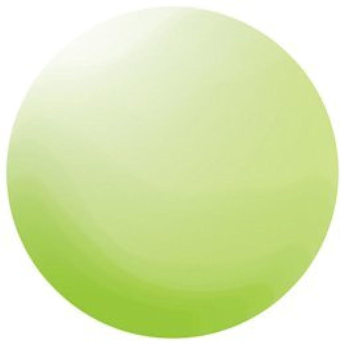 不規則性団結収束するKOKOIST カラージェル E-136 4g ペリドットグリーンビーチグラス