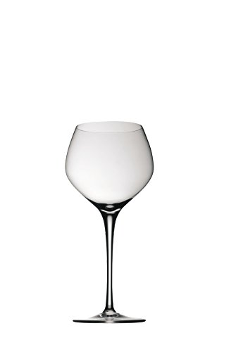 Junger Rotwein 200mm FUGA GLATT Rosenthal