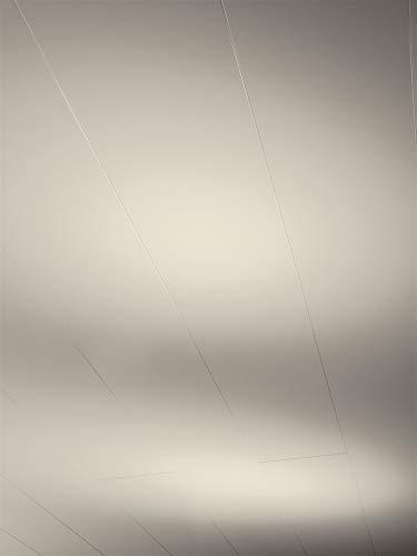 Parador Wand & Decke RapidoClick - Seidenmatt Taupe Dekor - Dekorpaneele feuchtraumgeeignet, einfache Klick-Montage - 2044 x 206 x 12 mm