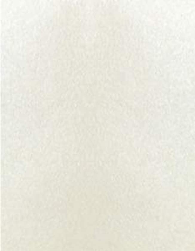Stardream Opal 105 lb. Cardstock Paper - 8.5 x 11 inch Cover - 125 Sheets