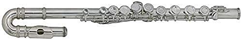 Roy Benson RB700390 - Flauta travesera para niños, estuche ligero rectangular