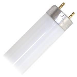 Philips Lighting 453746 T8 Standard Fluorescent Lamp 32 Watt 2-Pin G13 Base 2850 Lumens 82 CRI 5000K 48 Inch Length Alto