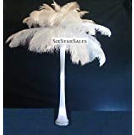 amazon com special 7 day sale ostrich wholesale bulk 10 14 long rh amazon com
