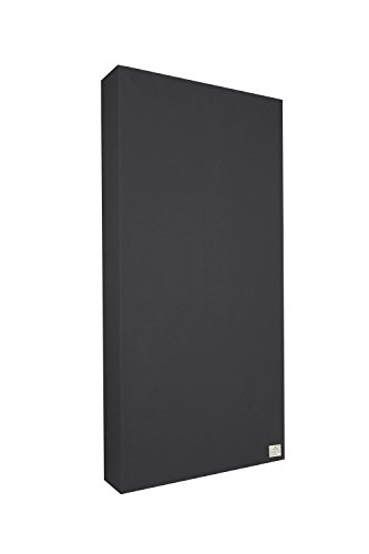 Schallabsorber Standard 100x50x11 cm by Addictive Sound – Raumakustik Akustikbild – Viele Farben - Graphit