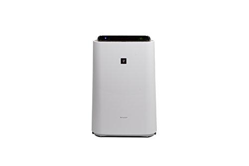 Sharp Home Appliances KCD50EUW - Purificador de aire (306 m³/h, 38 m², 55 dB, 2,5 L, 2 m, Blanco)