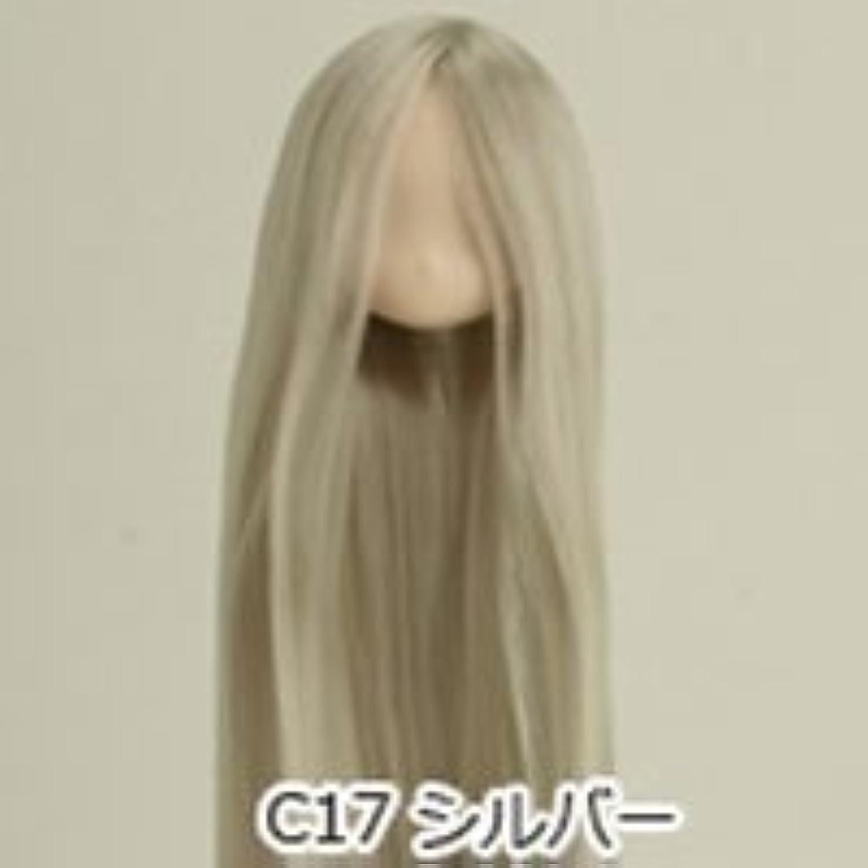 1 6 scale Obitsu 21cm rooted female head 21HD-F01WC17 White skin Silver hair by Obitsu