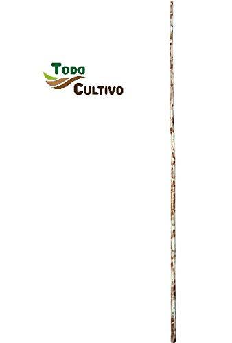 Todo Cultivo Vara de Madera Natural de 2,80 m. de Longitud. Válida para la Recogida de Aceituna, Pistacho, almedro, etc.