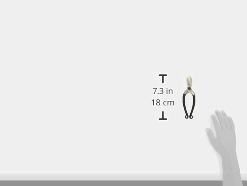 Okatsune Ikebana Scissors(7in), No.209