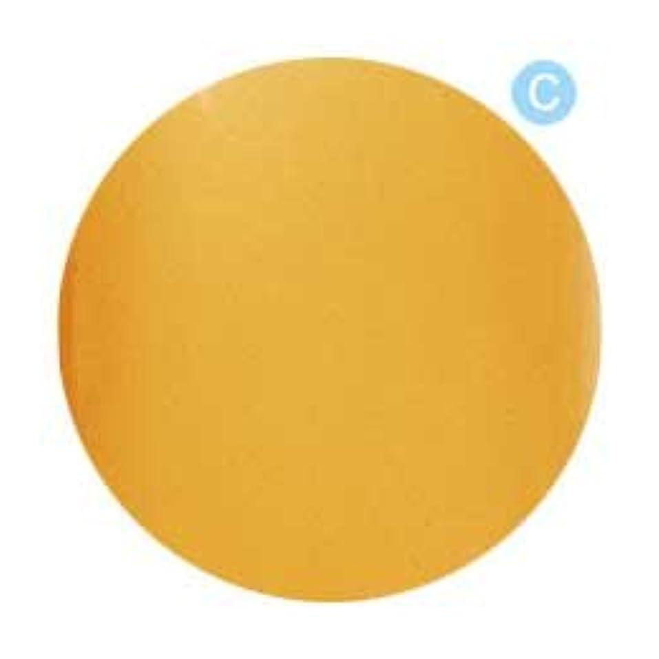 ノーブル会員ホバーPalms Graceful カラージェル 3g 020 クリアオレンジ