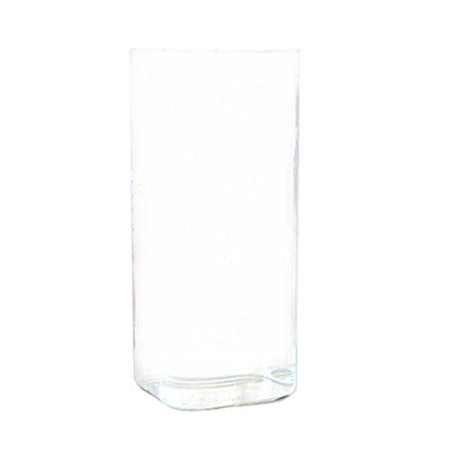 sharplace jarrón de vidrio botella Rectángulo suspendida para flor hidropónico decoración para hogar jardín mesa transparente